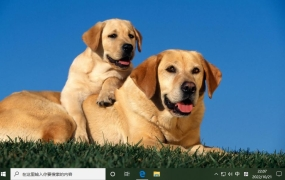 狗和小狗 Win10主题