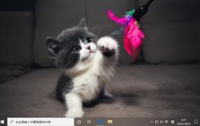 小猫咪 Win10主题